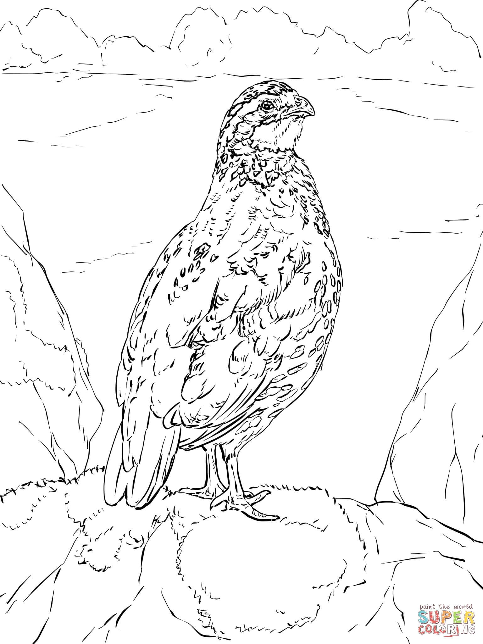 Grab Your Fresh Coloring Pages Quail Download Https Gethighit Com Fresh Coloring Pages Quail Down Coloring Pages Letter A Coloring Pages Printable Coloring