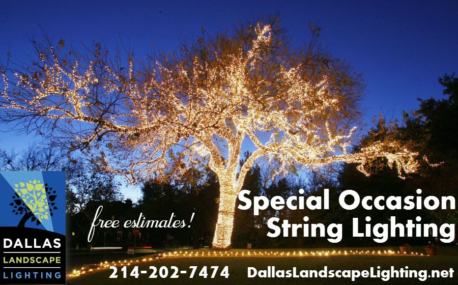 Pictures holiday string lights dallas landscaping and dallas landscape lighting installs residential or commercial string party lighting for special occasions or just mozeypictures Image collections