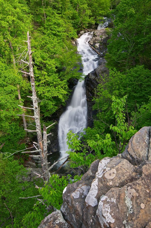 Whiteoak Canyon Falls, Shenandoah National Park, Virginia. Imagine the color in fall! #fallinva