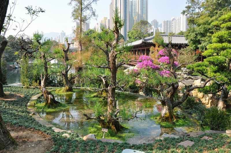Nan Lian Garden A Tranquil Respite In The Heart Of Hong Kong Hong Kong Kong Hong