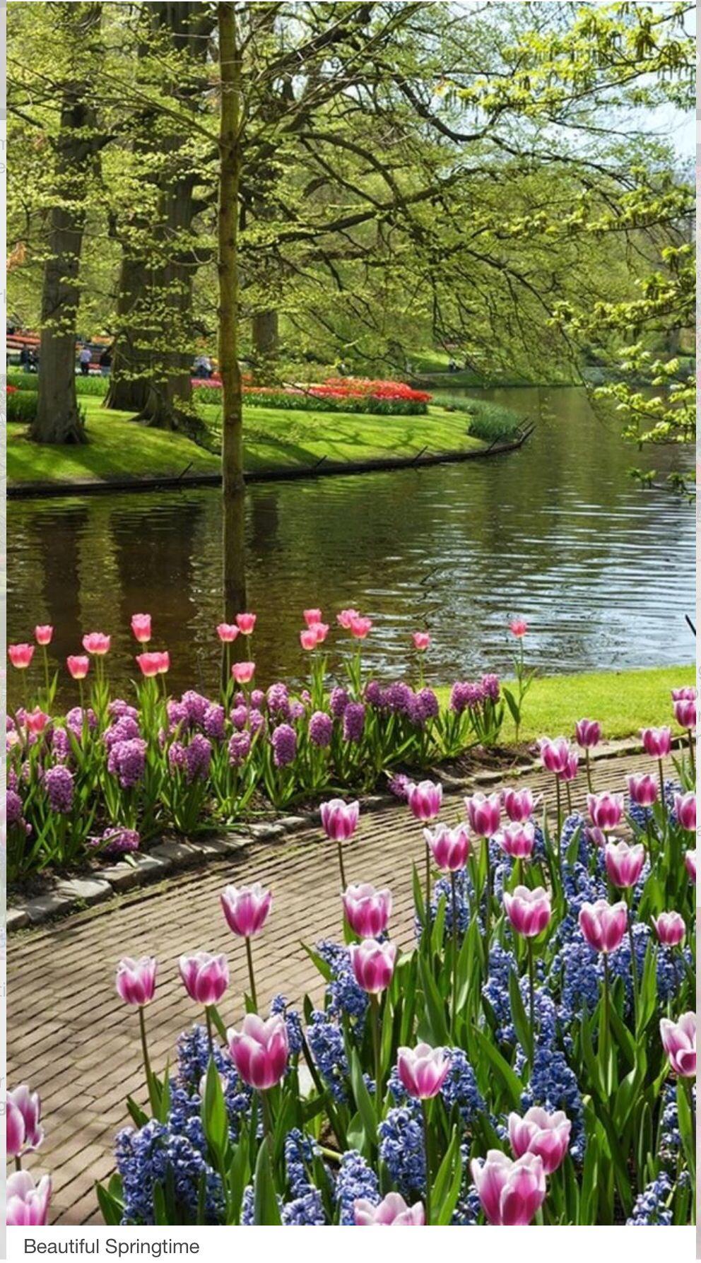 Que agradable un paseo por aquí....Eres feliz cuando disfrutas el ahora intensamente...
