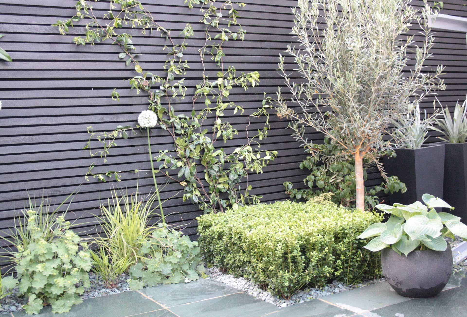 Contemporary-look urban garden design in London | Diseño ...