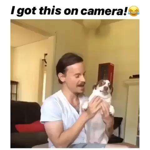 Photo of DOG ANGRY ON CAMERA MAN