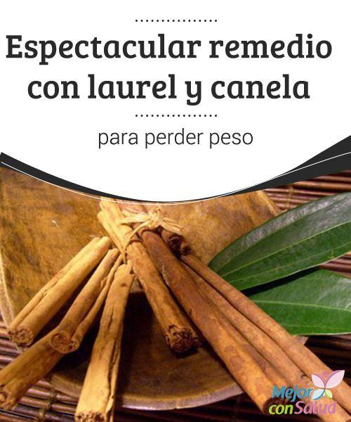 Espectacular remedio con laurel y canela para perder peso Hierbas para bajar de peso y quemar grasa