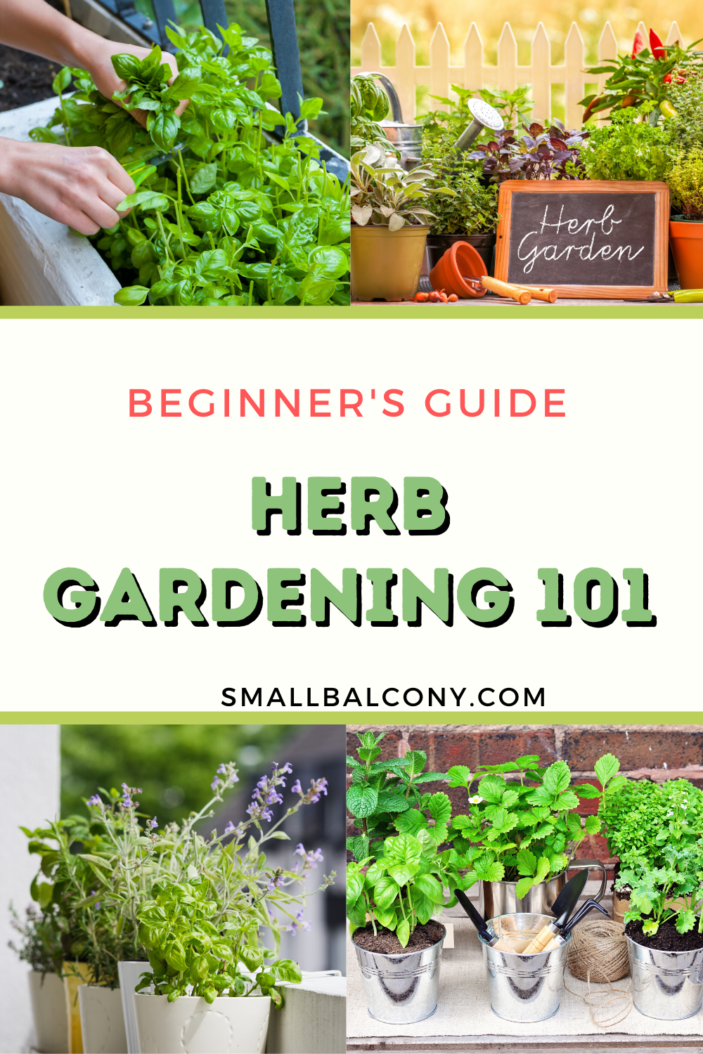 Beginner's Guide to Growing Herbs on a Small Balcony in ...