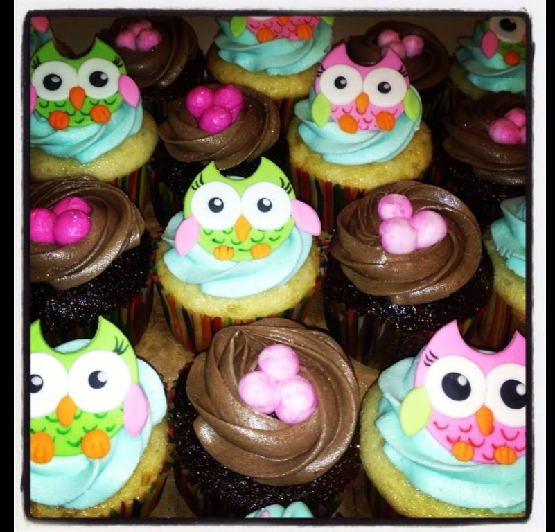 Owl Cupcakes For Baby Shower