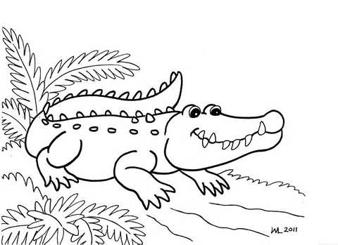 Alligator Coloring Pages for Kids Image  Alligators  Pinterest