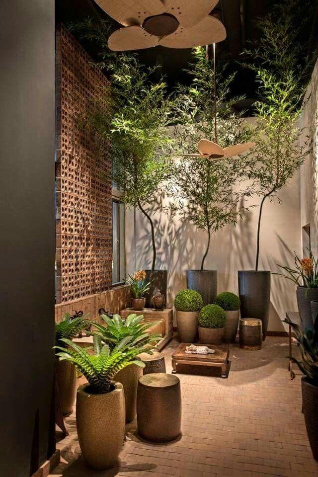 Jardines interiores modernos con palmeras arbustos rosas for Arbustos para patios
