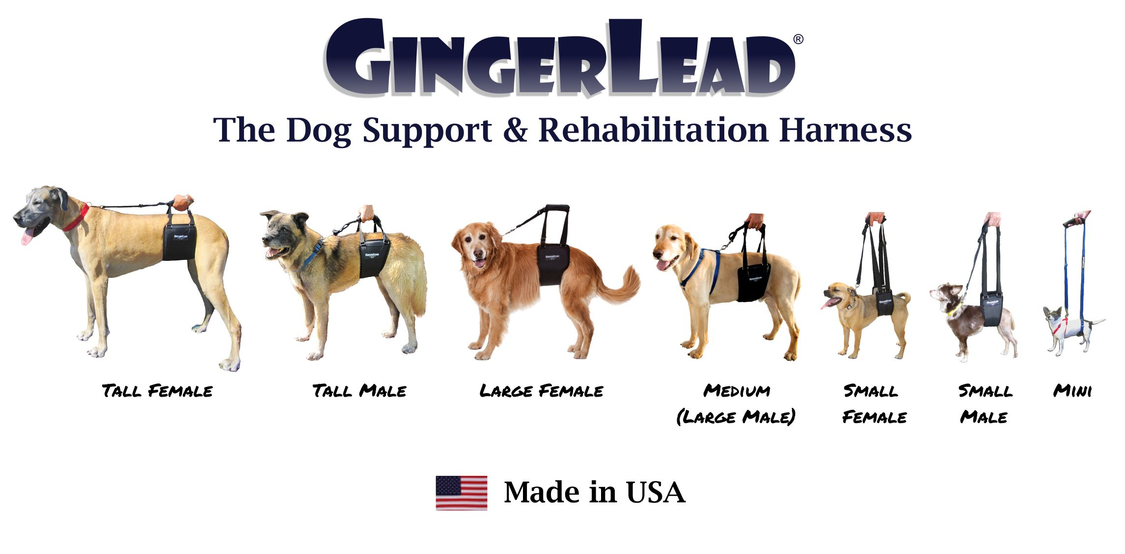 The Gingerlead Dog Support Rehabilitation Harness Is A Premium