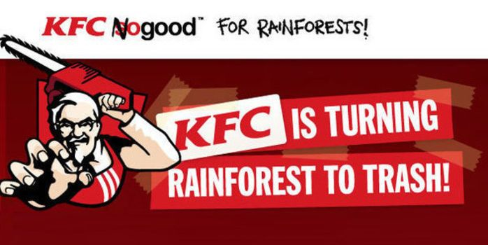 Kentucky Fried Chicken's supplier, Asia Pulp & Paper, gets the