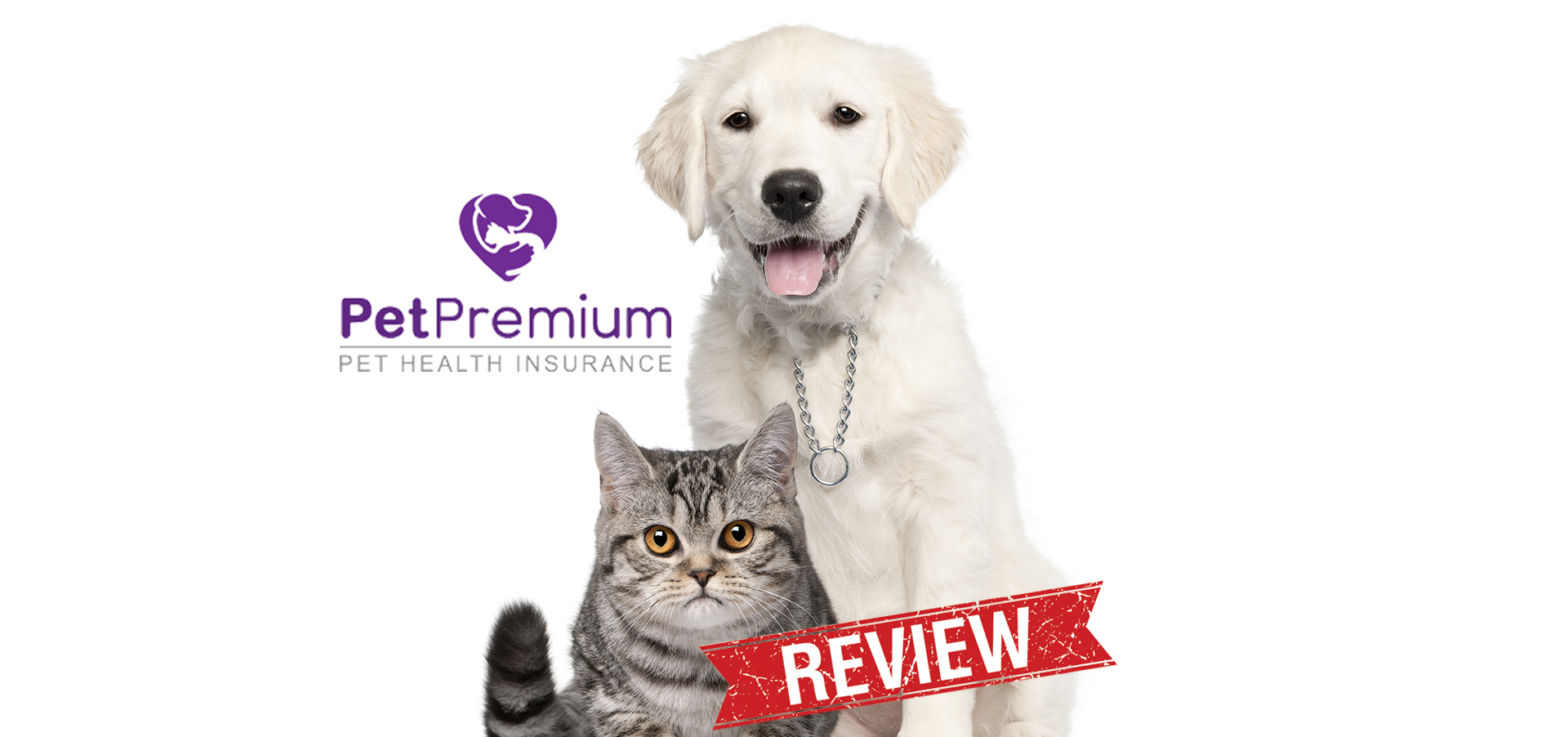 Petpremium Is The Newest Pet Insurance Provider On Our List Of
