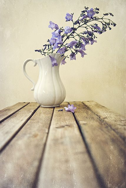 Lilac Flowers Flowers Photography Still Life Photography Beautiful Flowers