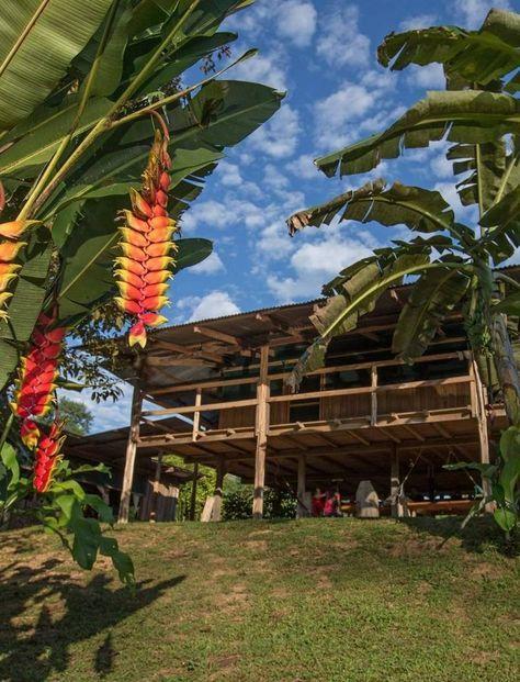 Où Lors Cet Trouvé D'un Au Dormir Voyage Costa RicaJ'ai 08nwymOvN