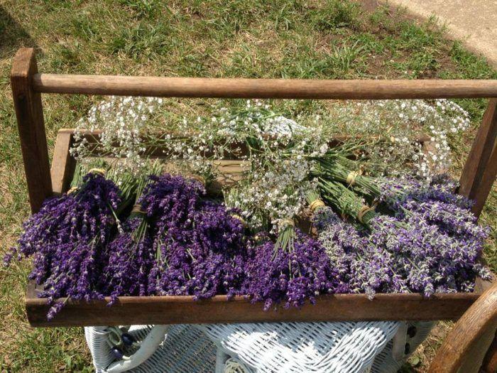 The Beautiful Lavender Farm Hiding In Plain Sight Near