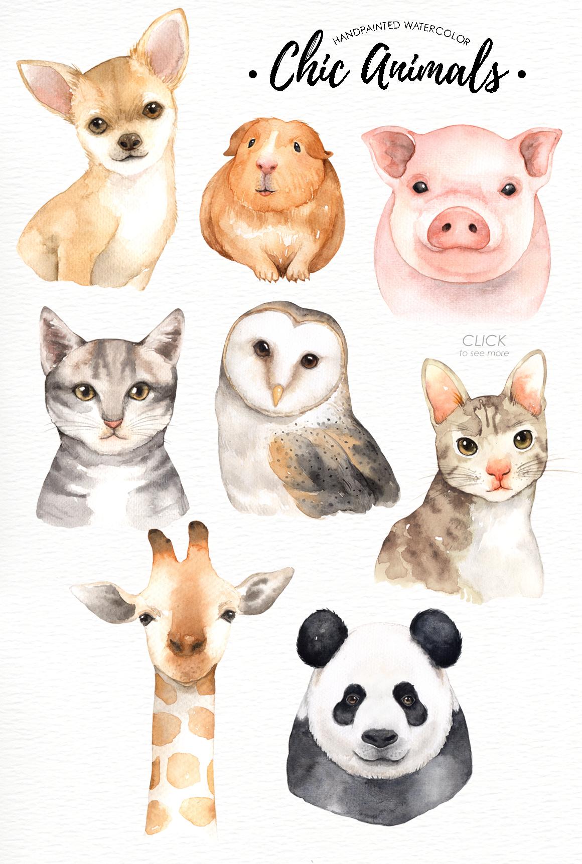 The Smashing September Bundle By Thehungryjpeg Thehungryjpeg Com Watercolor Animals Animal Drawings Animal Illustration
