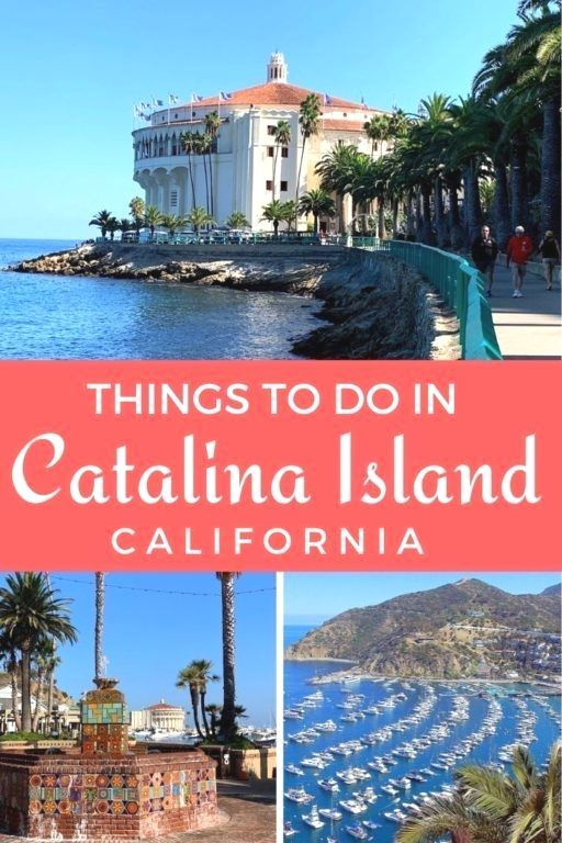 Guide and tips plus things to do in Catalina Island with