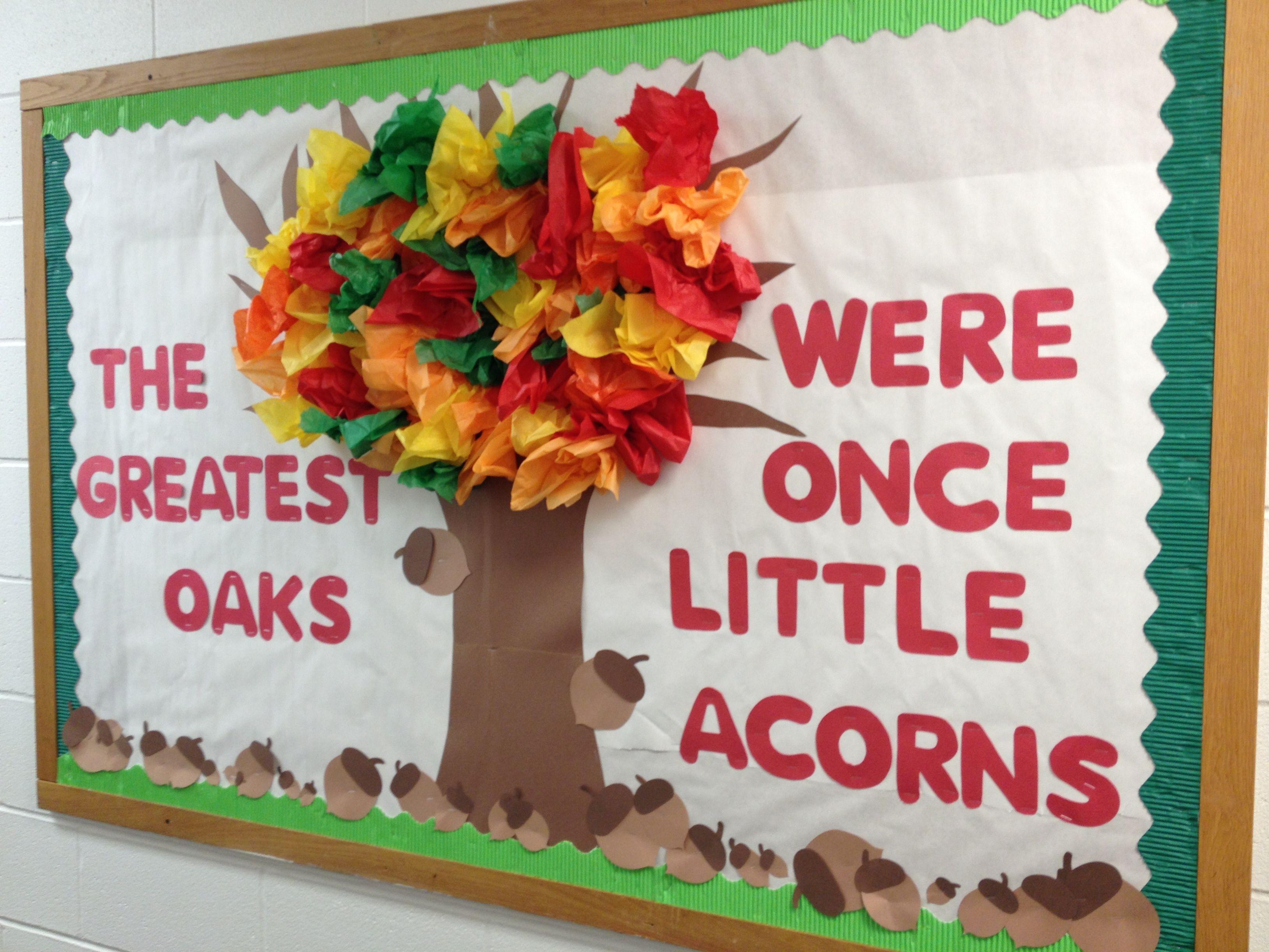 oaks preschool fall bulletin board the greatest oaks were once 620