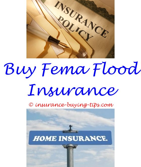 Fema Flood Insurance Quote As A Car Insurance  Car Insurance And Money Saving Expert