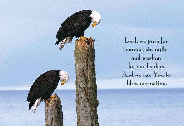 The Prayer Eagle