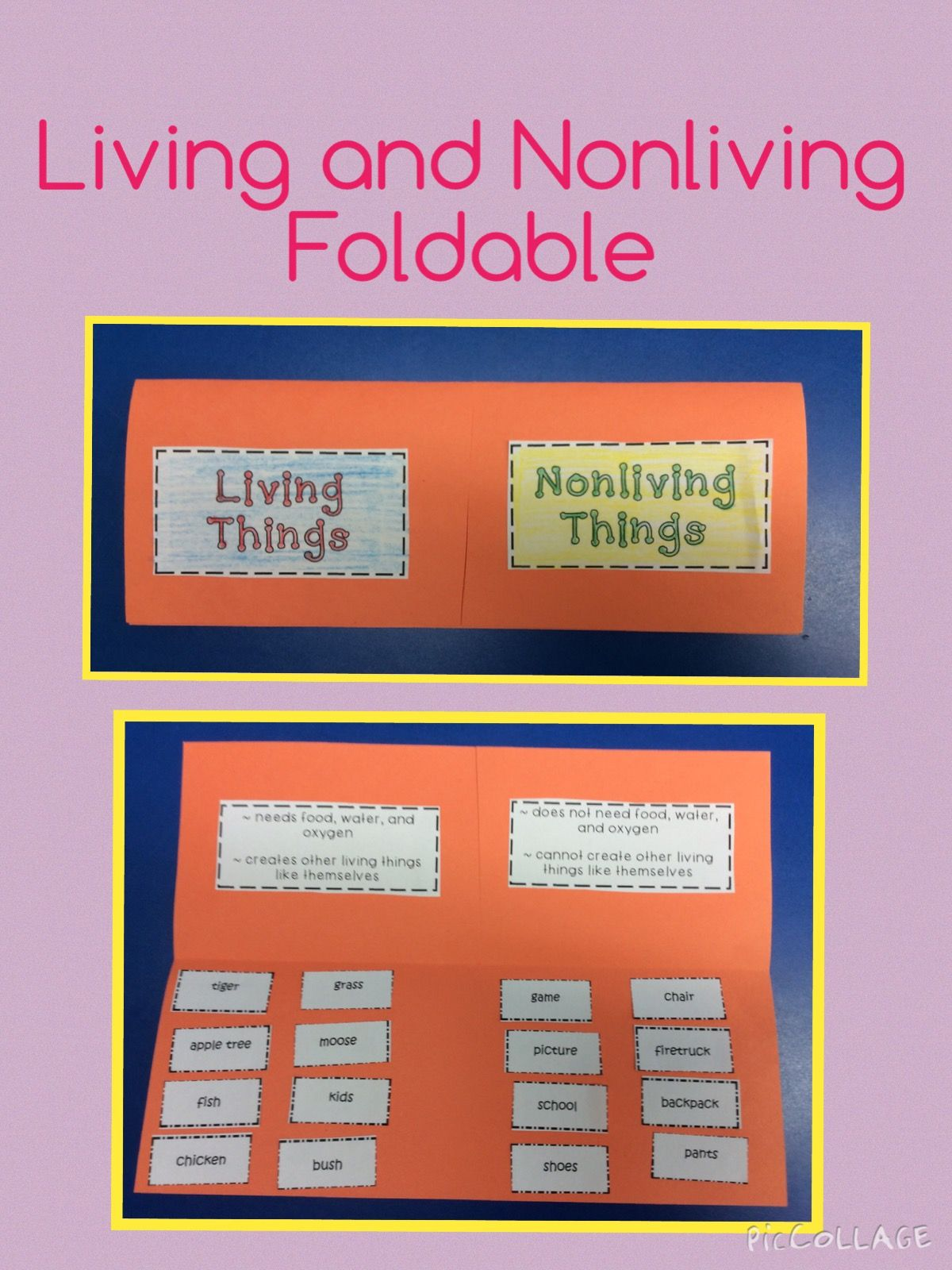 Here is a fun, hands on idea for teaching about living and nonliving things.
