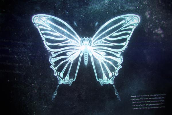 X-ray Butterfly by Michal Powichrowski, via Behance ...