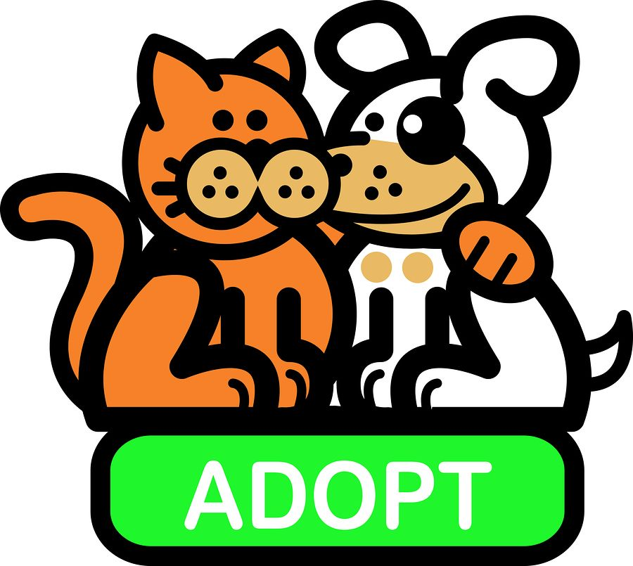 pet adoption clipart stock image resources pinterest shelter rh pinterest com Healthy Animal Shelter Cartoon Animal Shelter