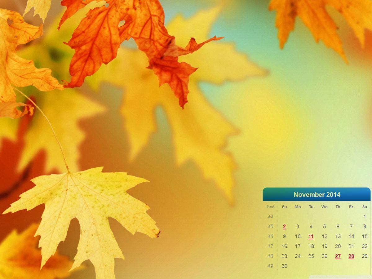 November 2014 desktop wallpaper Autumn leaves wallpaper