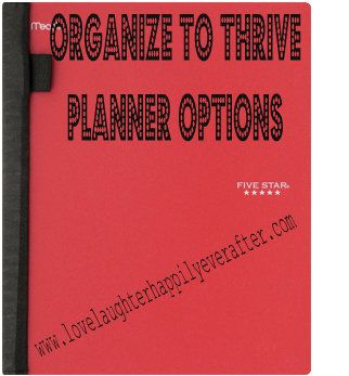Organize to thrive: Multiple Planner options, prices, pros and cons are on the blog today!