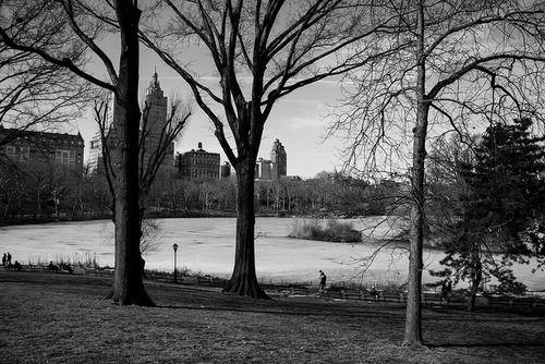 new york city photography   Tumblr