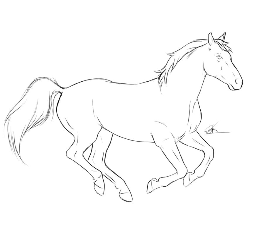 Horse Sketches Outline | Running Horse by chronically ...