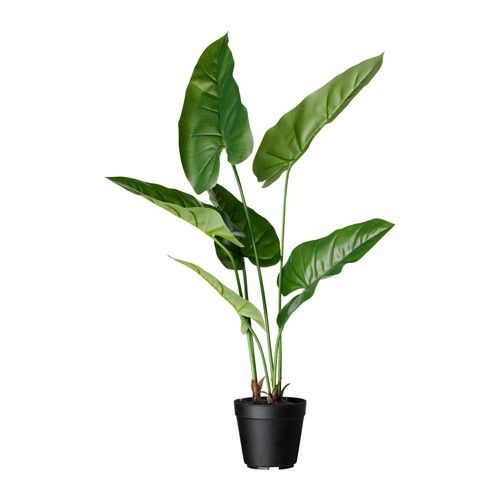 fejka artificial potted plant ikea lifelike artificial plant that remains looking fresh year. Black Bedroom Furniture Sets. Home Design Ideas
