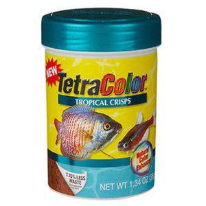 Null Tetra Fish Fish Recipes Fish