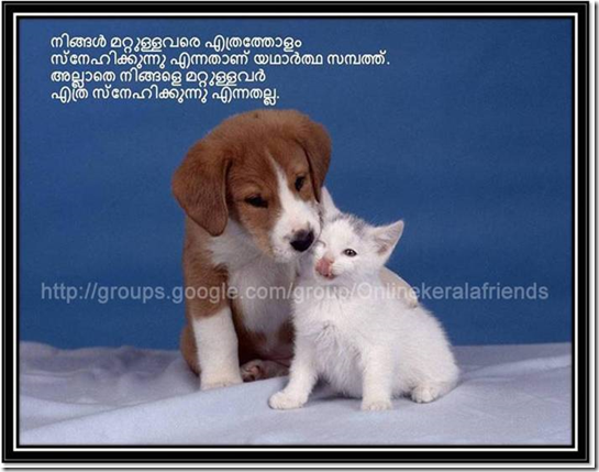 Friendship Quotes Funny Malayalam Places To Visit Dogs Dog Cat