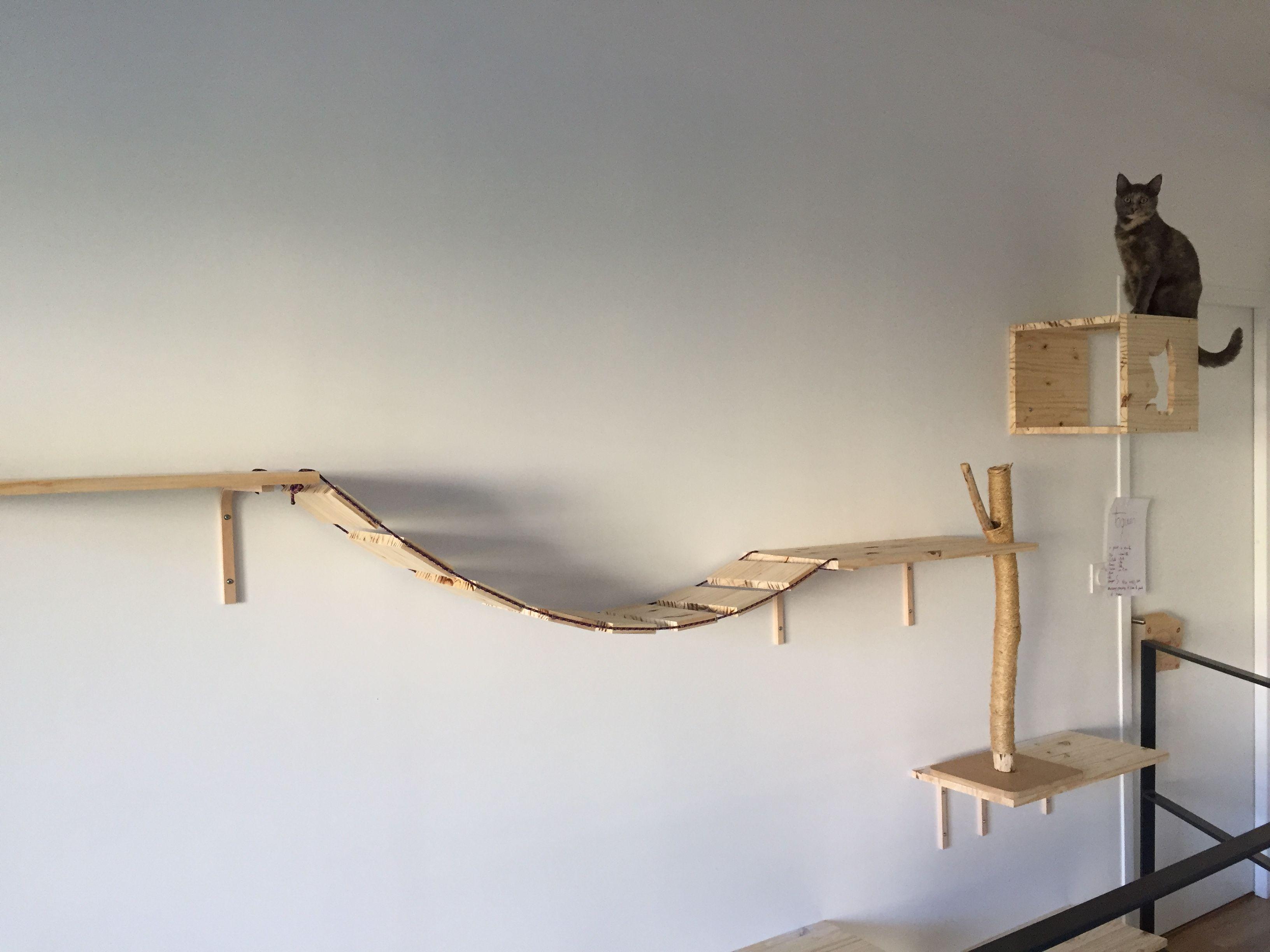 parcours pour chat diy mes r alisations pinterest chat parcours et diy. Black Bedroom Furniture Sets. Home Design Ideas
