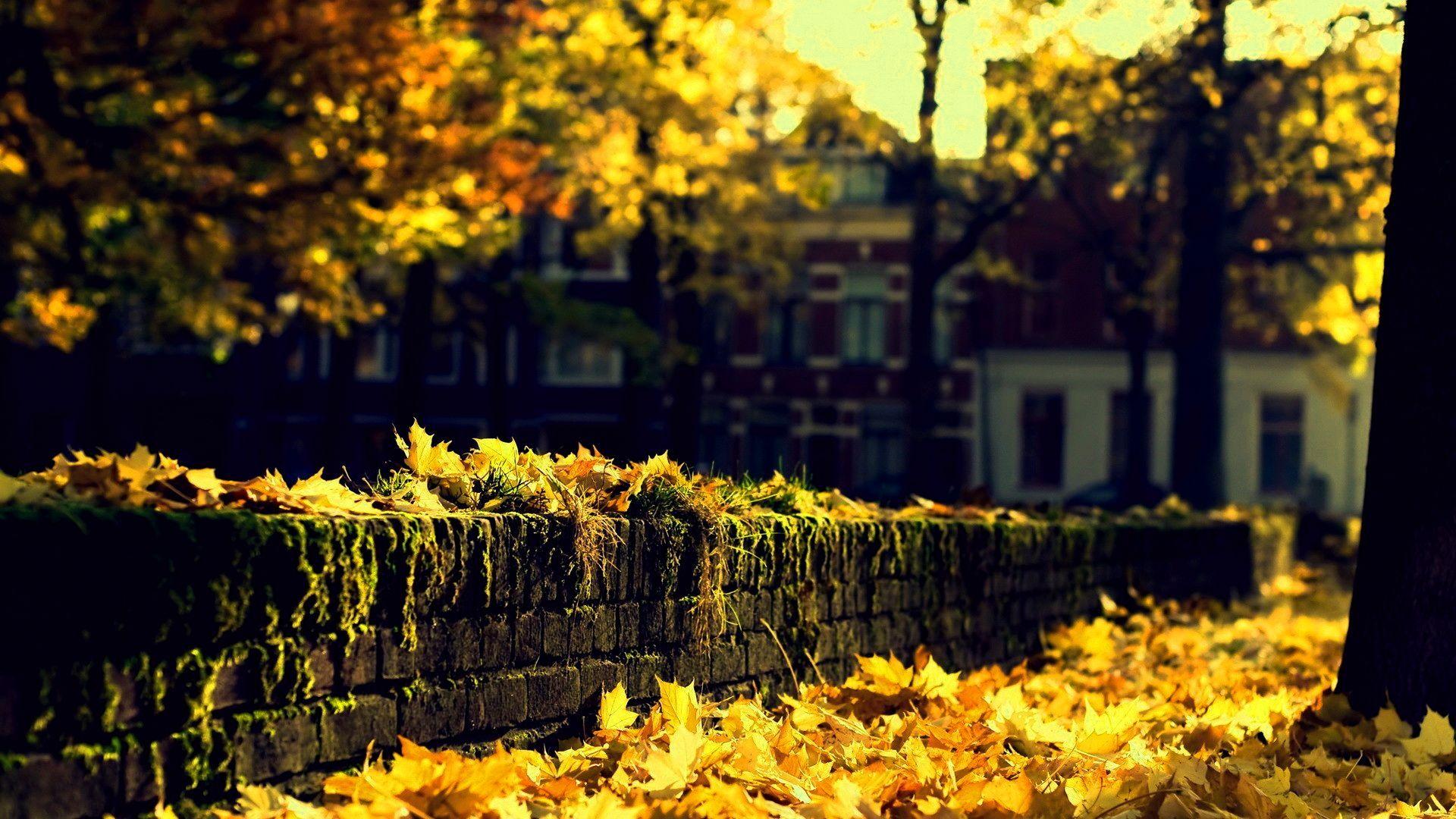 Autmn Landscape 4k Ultra Hd Wallpaper 4k Wallpaper Net Autumn Landscape Hd Nature Wallpapers Landscape Wallpaper