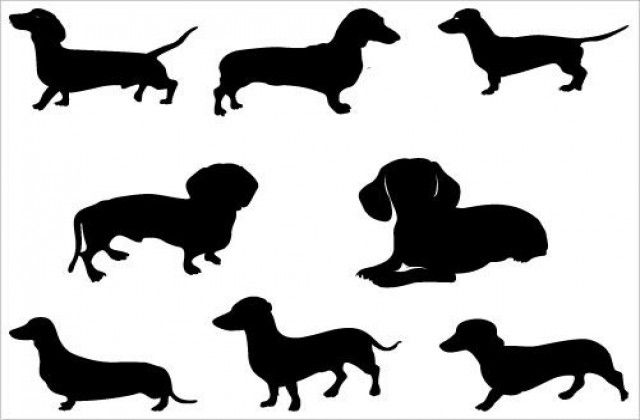 tag for dachshund clipart free resimkoy just cause i like it rh pinterest co uk Dachshund Dogs Clip Art Dachshund Art