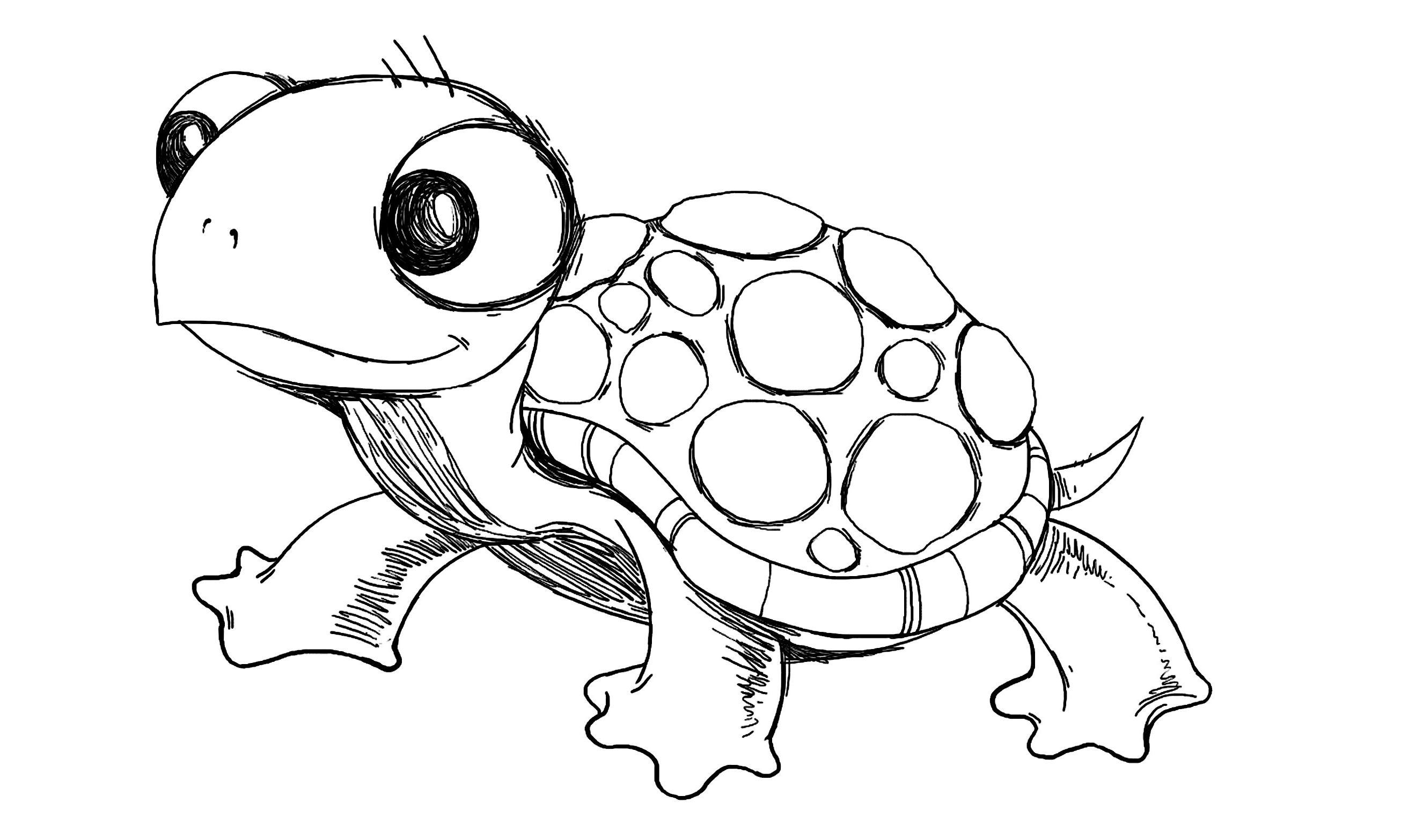 Sea Turtle Cartoon Drawing And Drawings Of Sea Turtles Cartoon Sea