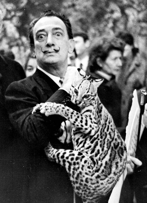 Surrealista Exotische Haustiere Exotische Tiere Salvador Dali