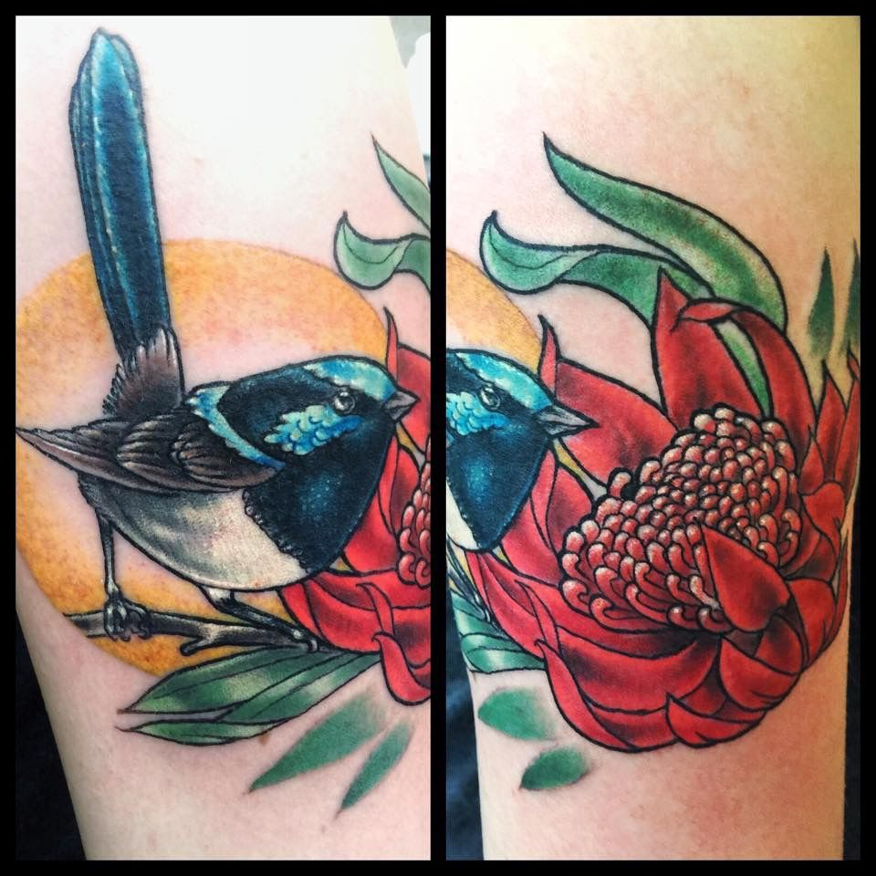james 39 blue fairy wren and tasmanian waratah flower tattoo by liz baker from maid and magpie. Black Bedroom Furniture Sets. Home Design Ideas