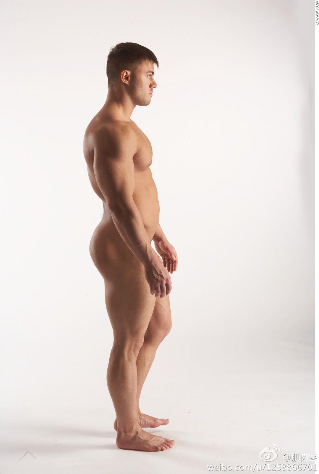 pinmanolo peña* on anatomy / artistic nude / figure studies