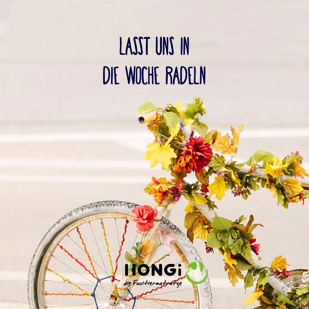 Lass Uns In Die Woche Radeln Radeln Einstein Fahrrad Fahren