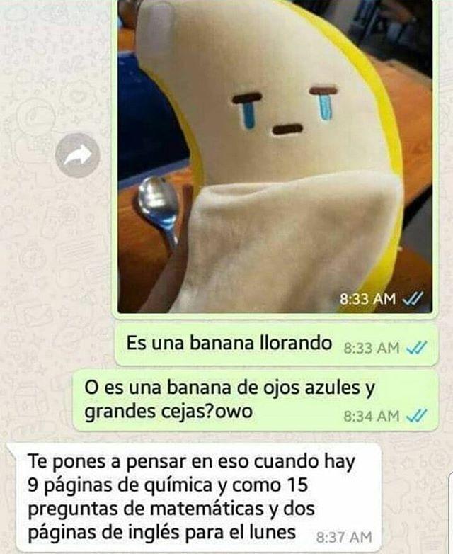 Humorultralatino En Instagram Jajaja Sigueme Humorultralatino Menciona A Tus Amigos Momingos Br Chistes Y Bromas Frases Chistes Memes Divertidos