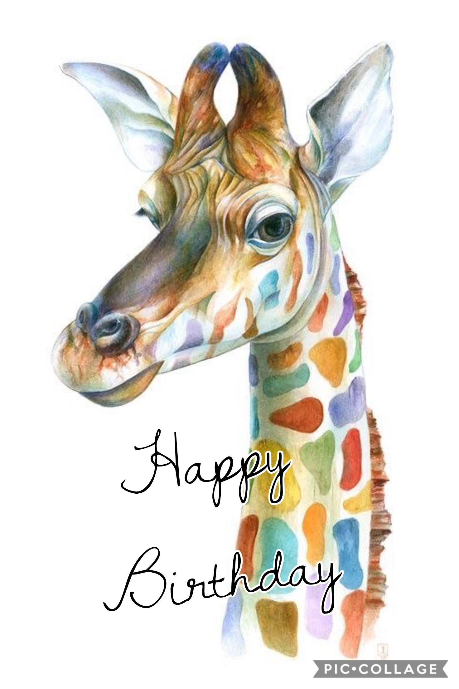 Pin By Pamela Barb On Quotes Pinterest Birthday Quotes Happy
