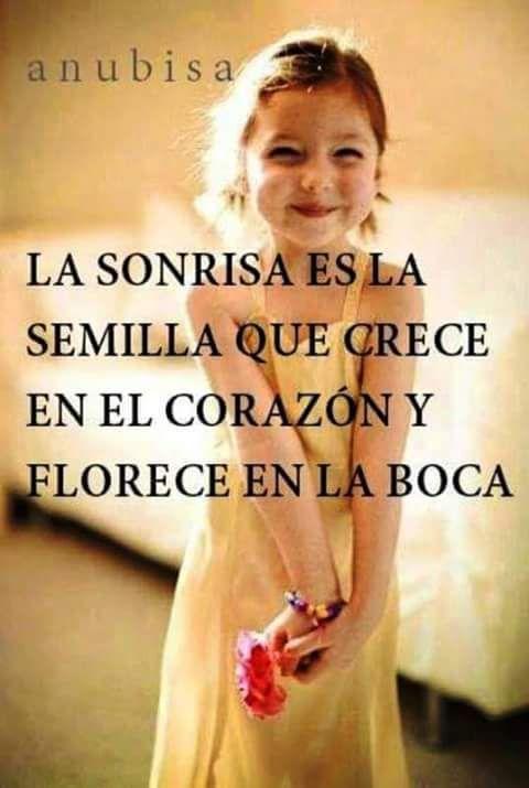 Imagenes Con Frases Sobre La Sonrisa Sonrisa Frases