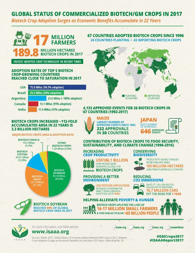 Developing Nations Lead Growth Of Gmo Crops Avec Images