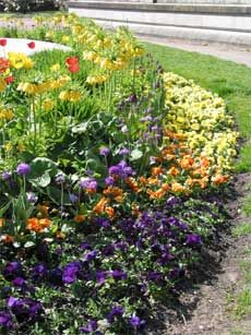 How To Build A Flower Bed – Starting A Flower Bed From Scratch #flowerbeds