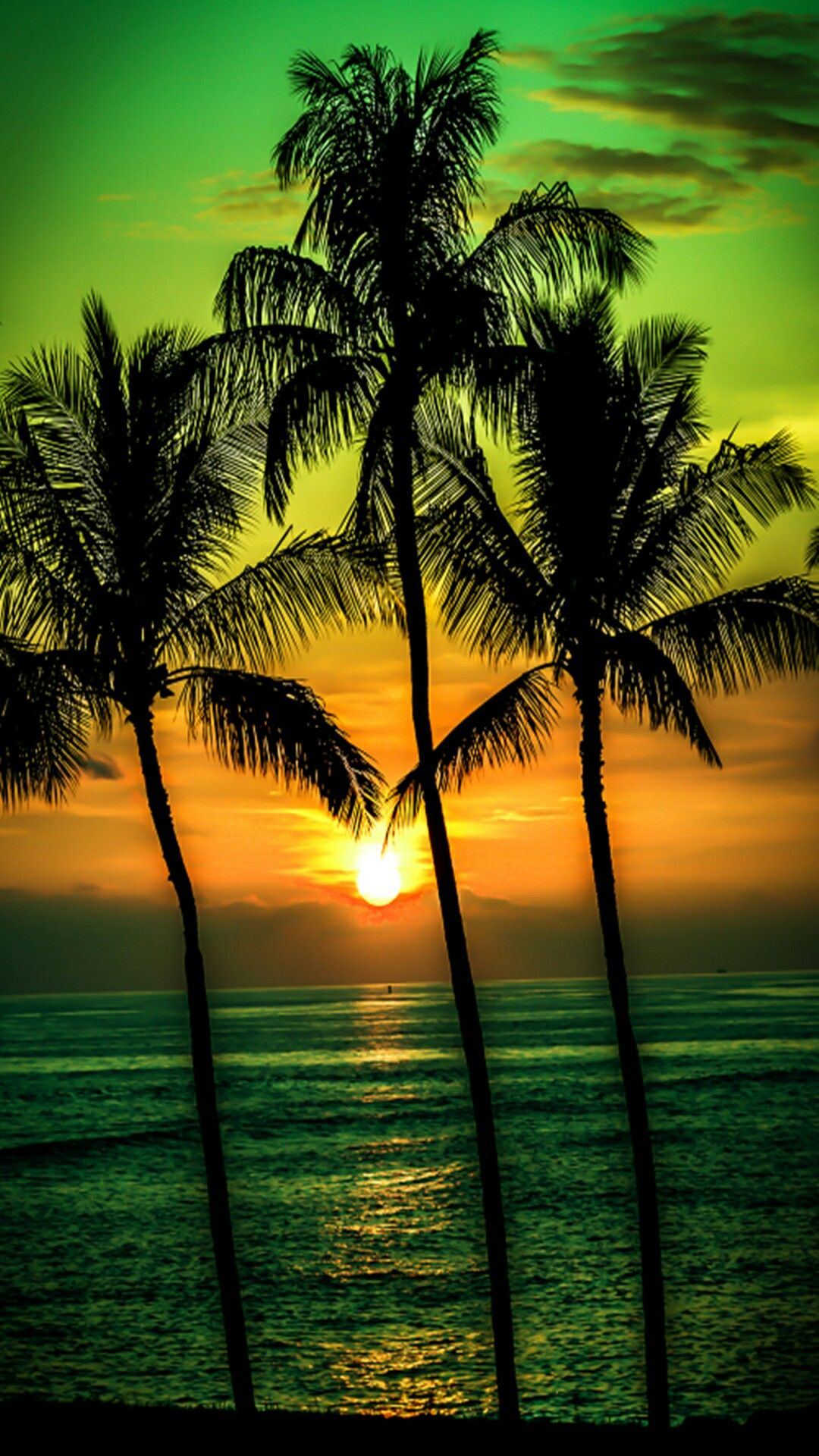 Palm tree sunset wallpaper phone wallpaper Pinterest