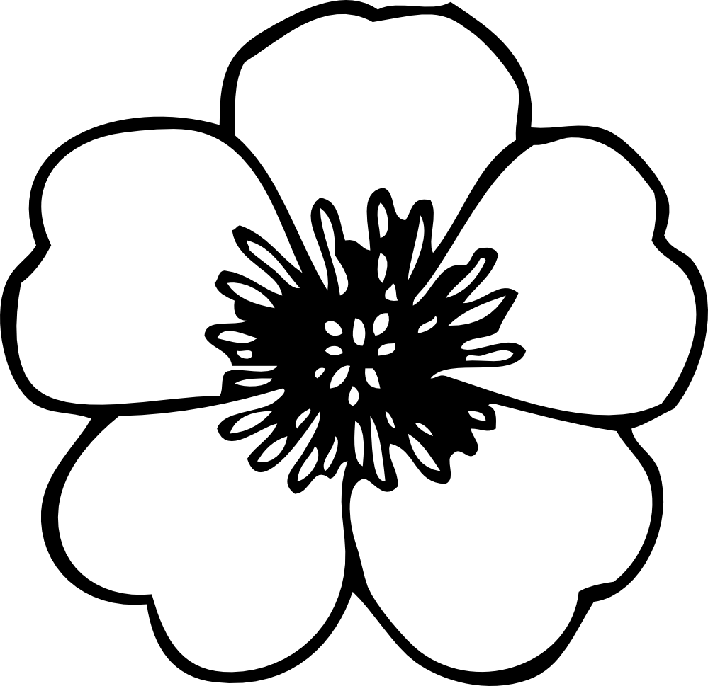 Drawings of flowers template. Free line clipart library