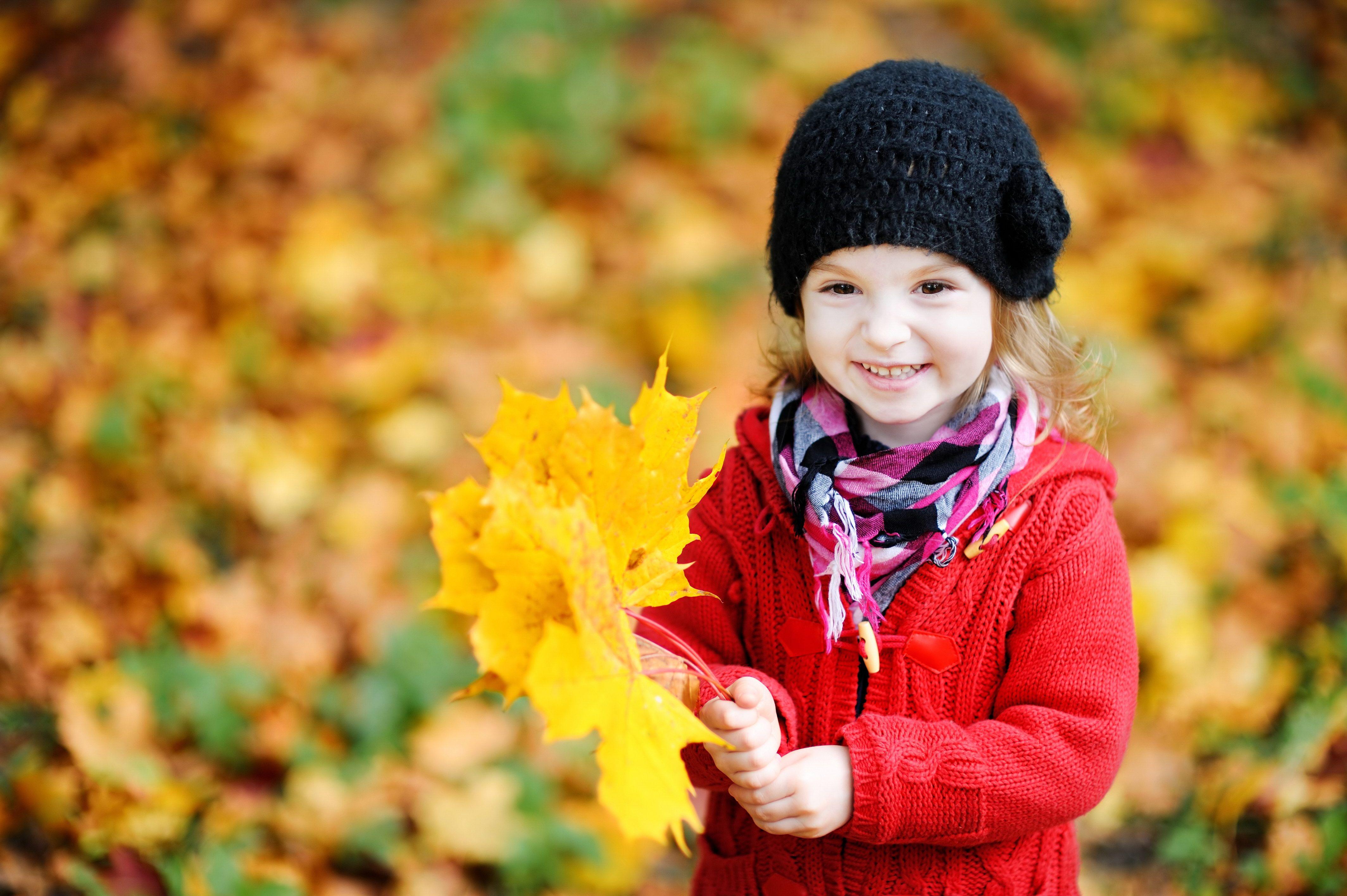 Алфавита, картинки осень дети листья