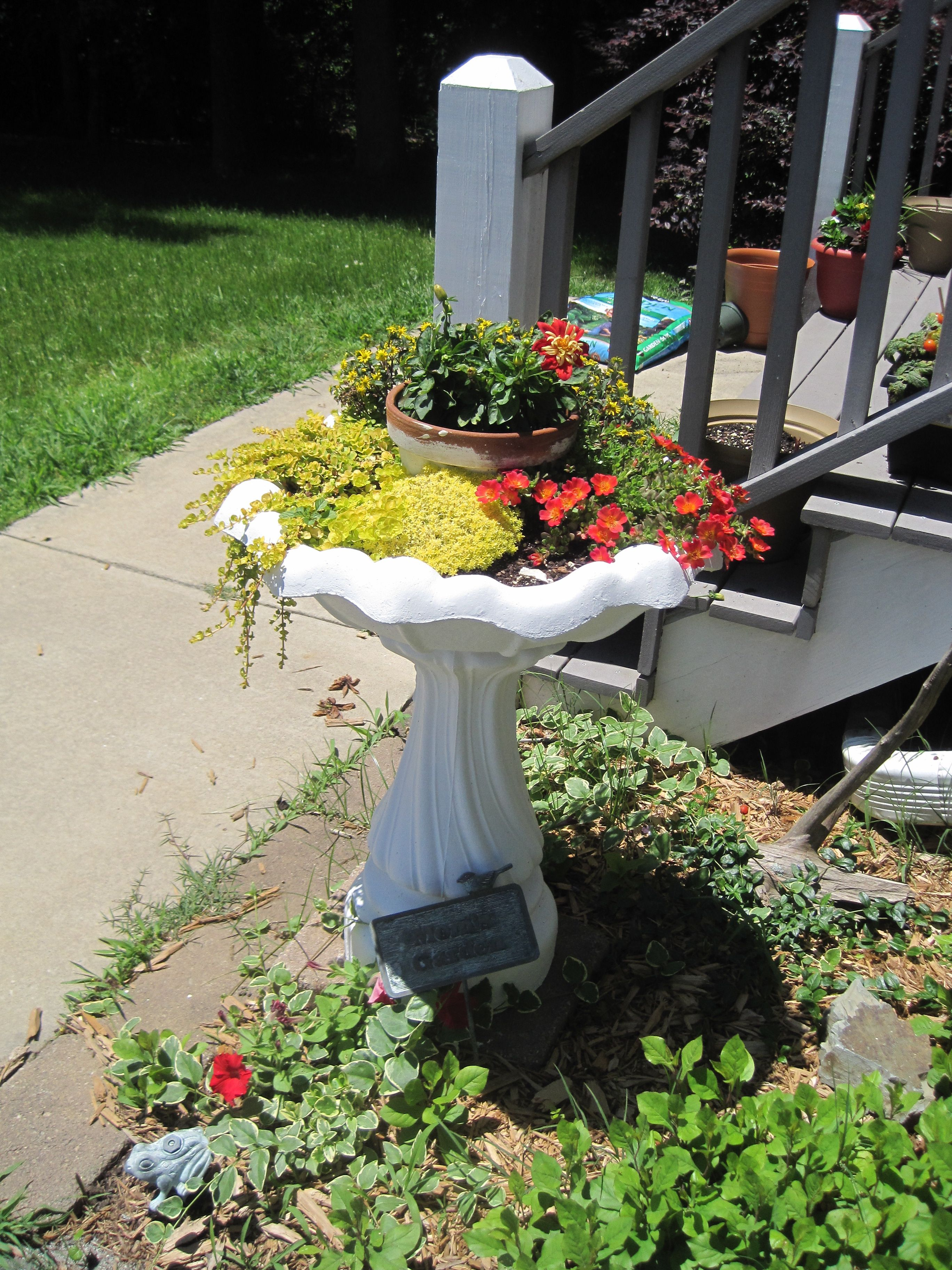 bird bath planter | Patio plants, Bird bath planter, Birds ... on Birds Backyard Landscapes id=90932